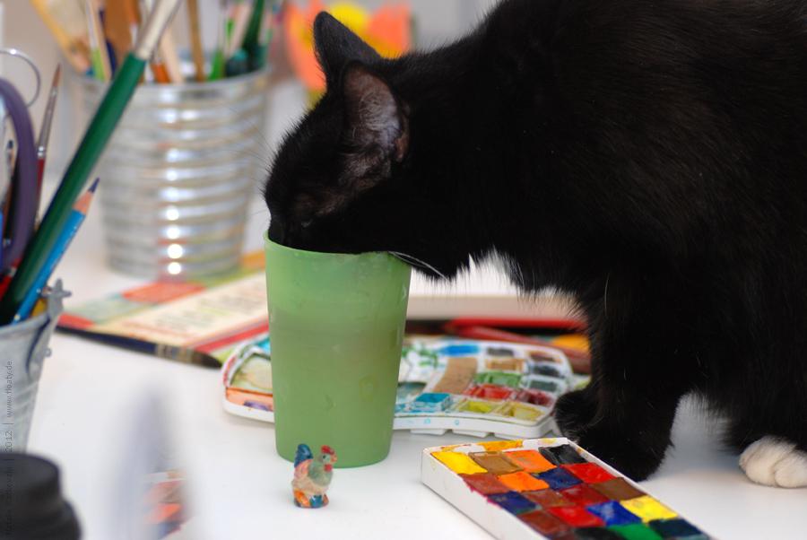 The art kitten :-)