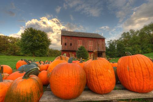 autumn ohio orange fall barn rural pumpkin geotagged nikon raw nef farm country hdr cs5 massillonohio d3s starkcountyohio nikkor1424f28 nikongp1 photomatixpro4 rohrbarn