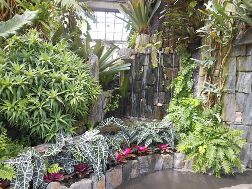 Cascade Garden, West Conservatory, Longwood Gardens, Pennsylvania