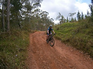 Steep Descent - Glasshouse Mountains
