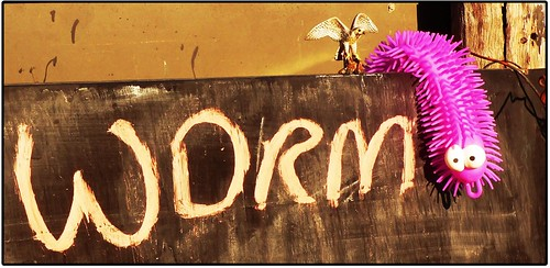 worm by Leonard John Matthews