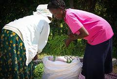 2012 Kenya (220 of 170)