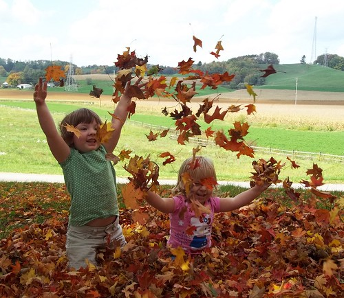 Tossing the leaves
