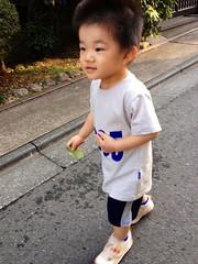午後の散歩 (2012/10/7)