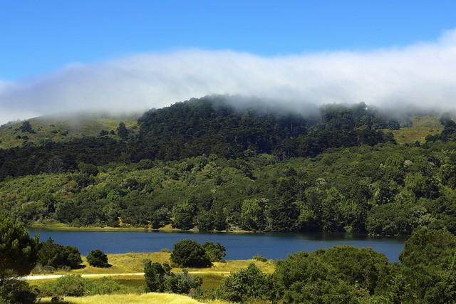 Mist in Foveon Blue