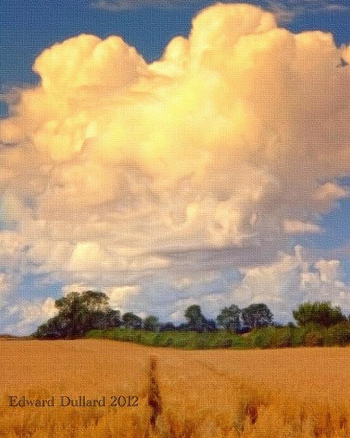 Textured landscape.