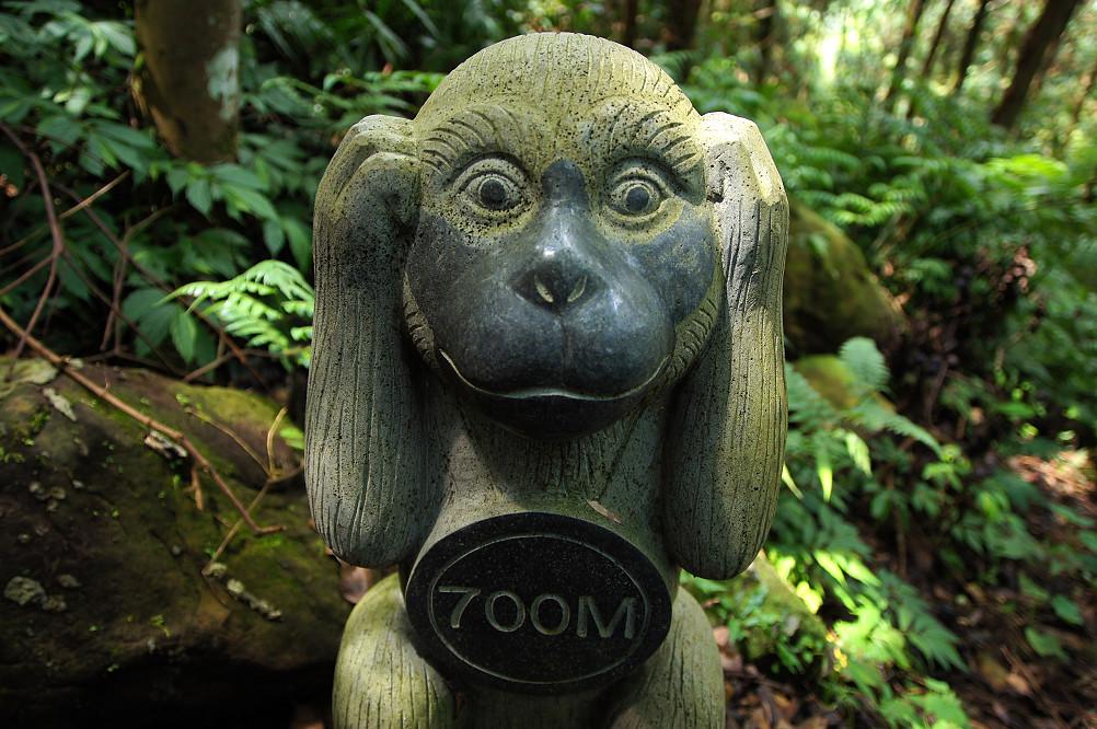 猴洞步道-22