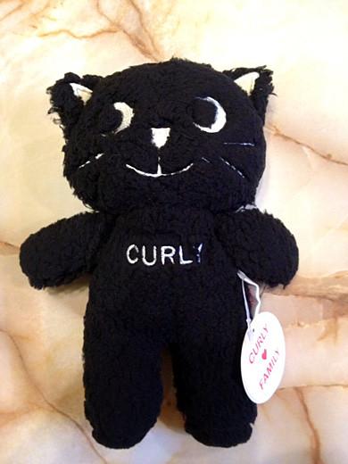 curly-cat1