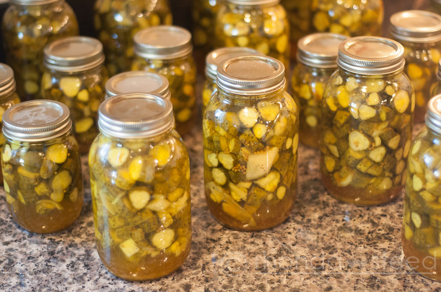 Canning B&B Pickles