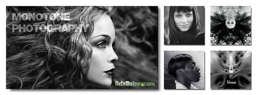 FaceBook Collage   Monotone Photography