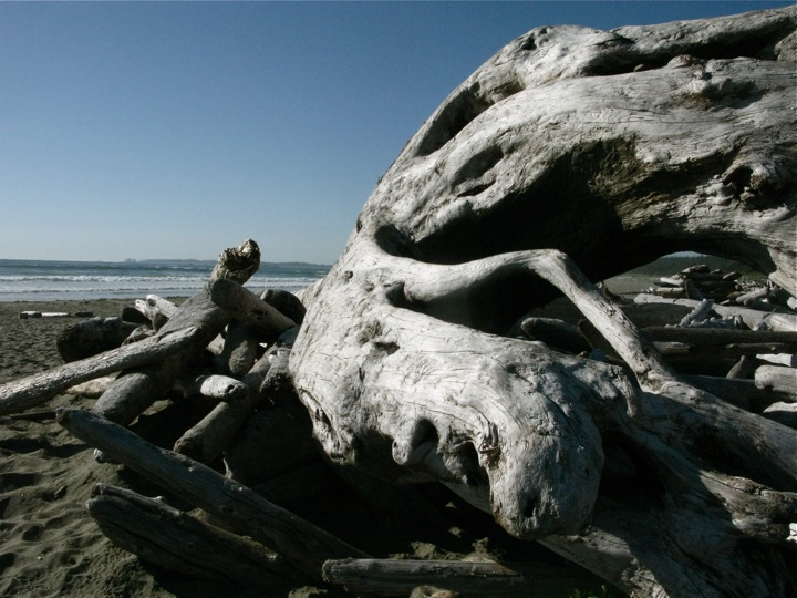 ucluelet beaches 014