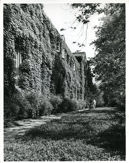 A man strolls the path near Bridges Hall of Music in this 1949 photograph