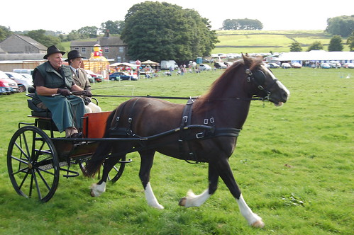 Bowes Agricultural Show Sept 12 (37)