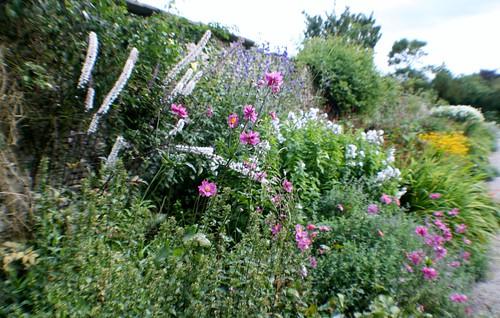 Garden, Sizergh Castle