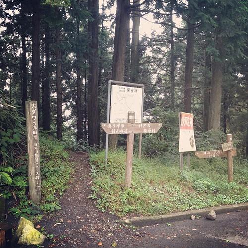 今日はロードで鋸山。路面は苔でウエッティなので登りでスリップ。これから仕事へいってきます。