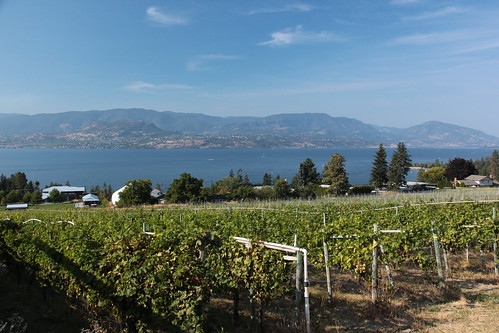 Day 14: Kelowna Wine Country