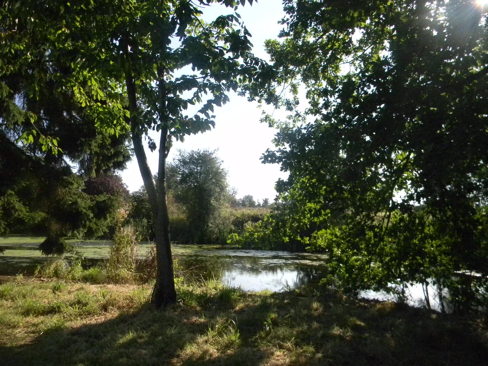 Along a watercourse The Wid? Roydon to Sawbridgeworth