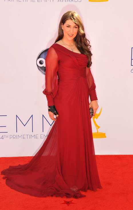 Mayim Bialik wearing Pamella Roland, emmys