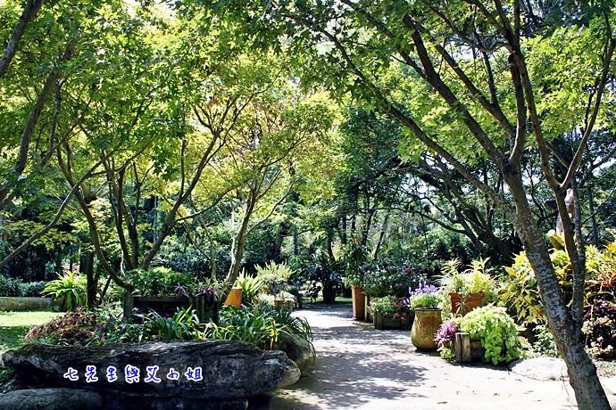 0 千樺花園餐廳