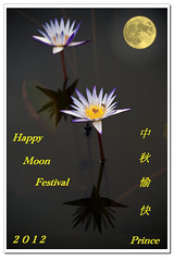 中 秋 愉 快 - Happy Moon Festival - 2012