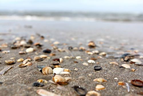 Zandvoort_8533