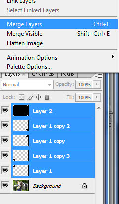 photoshop merged layers palette
