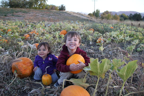The two kids in the pumpkins 3