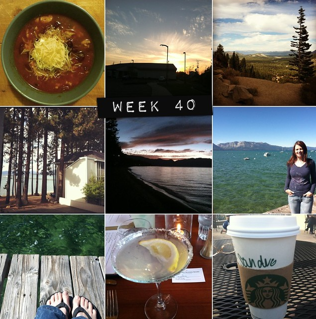 2012 in pictures: week 40