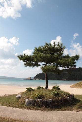 Takahama Beach 高浜海水浴場
