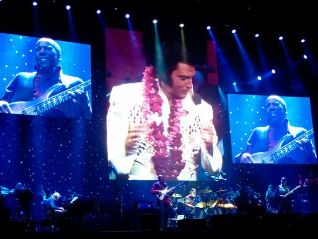 Elvis Presley - Le Concert - Zénith, Paris (2010)