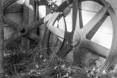 Steel Wheels (Black and White)