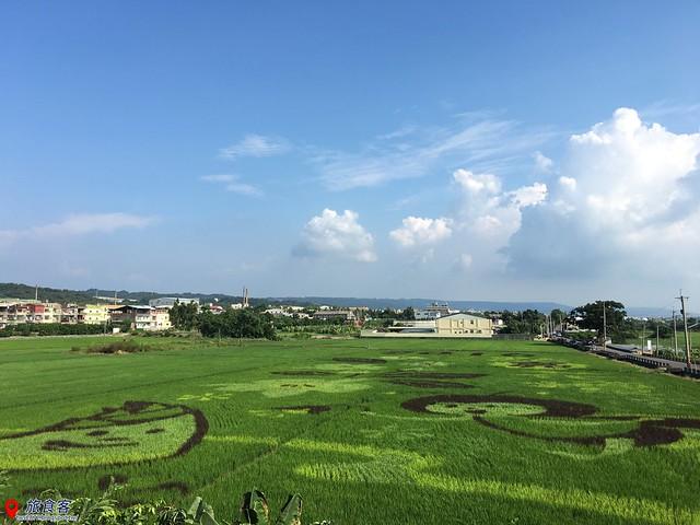 花壇彩繪稻田_002