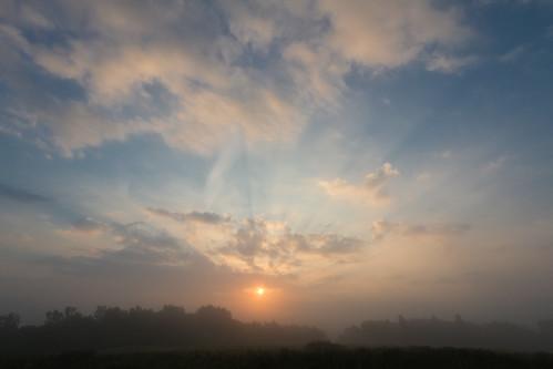 morning blue light mist green nature fog set sunrise canon rising early natur shining oldenburg hunte sigma1020mmexdc 60d buschhagen sevensights