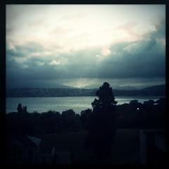 A few shades of gray. #hipstaconnect #igersgeneva #igerssuisse #lakegeneva