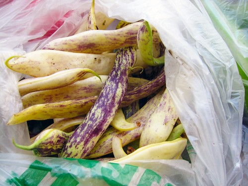 Close-up of long, light yellow beans streaked with dark purple.
