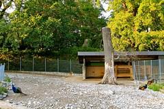 Les conservatoire et jardin botaniques - Ville de Genève