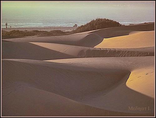 ocean sand pacific vegitation thedunes medhathi
