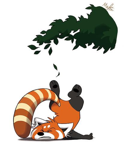 fallen panda
