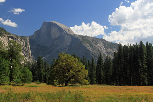 Half Dome, Meadow and the Old Oak Tree and Me (Explored)