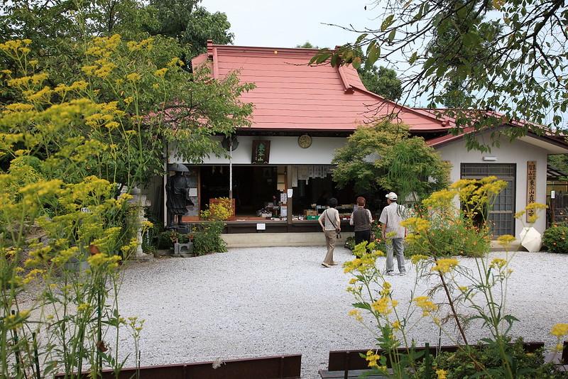 真性寺・女郎花