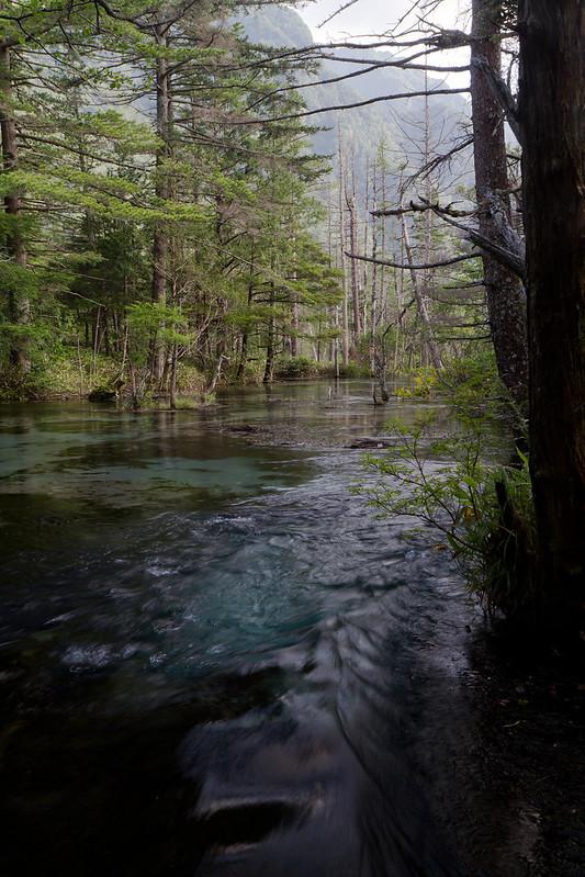 Fresh Stream
