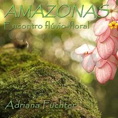 AM - Manaus, florestas, rios e comunidades ribeirinhas