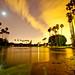 Small photo of Alondra Park