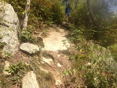 Linville Gorge Trail 4
