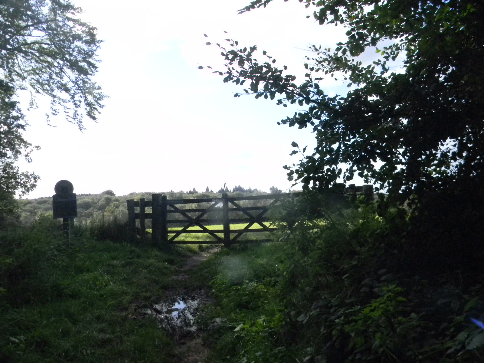 Valewood Park - gate Haslemere Circular