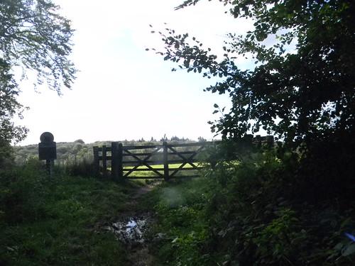 Valewood Park - gate