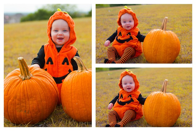 Baby Pumpkin Collage 1
