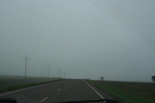 FoggyMorn