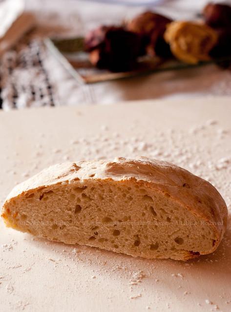 pane con lievito di governo mozzarelle int