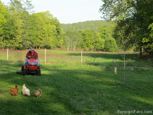 Wordless Wednesday dose of cute - FarmgirlFare.com